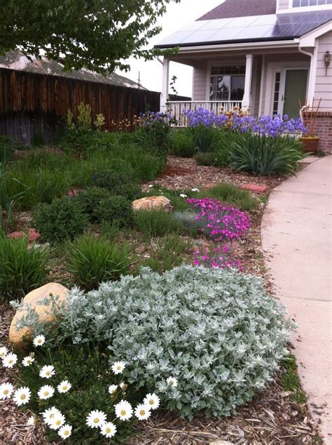 front yard water 1000 images about water saving landscaping ideas on