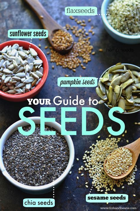 guide to seeds and a nut free trail mix recipe fork