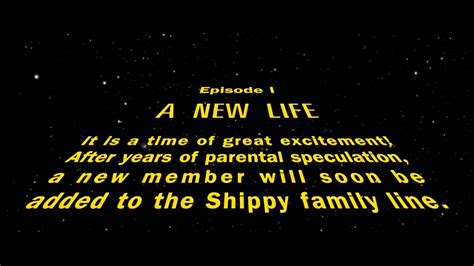 the most important movie trailer ever star wars baby
