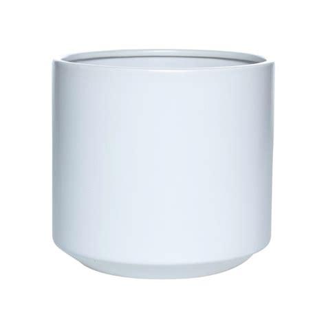 white pot philodendron selloum in white fredrik pot plantandpot nz