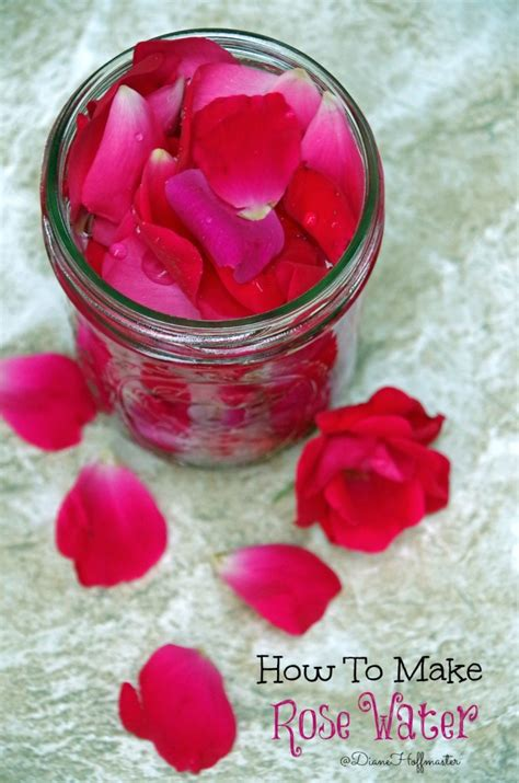 homemade rose food how to make homemade rose water for natural skincare