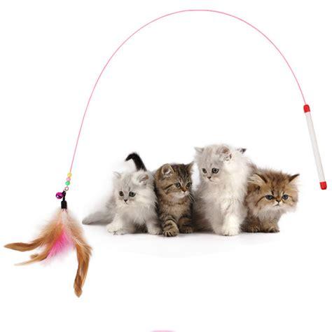 Cutest Cats Pet Pet Pet Product by 1pc Pet Cat Design Steel Wire Feather Teaser