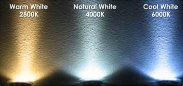 led lights what is the difference between warm white and