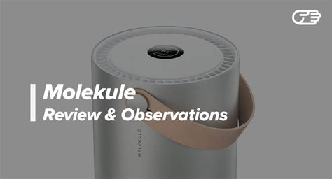 molekule review   air purifier worth