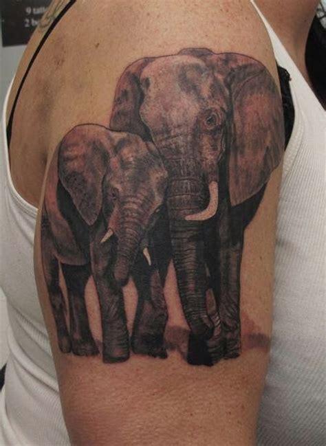elephant tattoo male genital region tatuaje de elefantes fotos de tatuajes