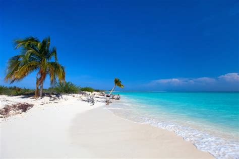 8 Beaches You To Visit 8 beaches you should visit on your trip to cuba bandbcuba