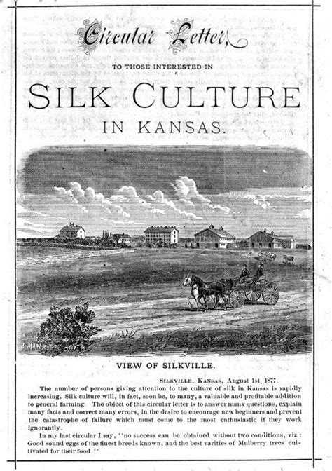 a true and concise history of the ku klux klan in their own words books franklin county history bibliography kansas historical
