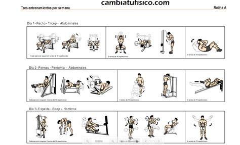 tabla de ejercicios con mancuernas 2015 para principiantes tabla de ejercicios con mancuernas 2015 para principiantes