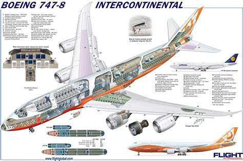 Boeing 747 Cabin Layout by Boeing 747 8 Planes Boeing 747 Cutaway