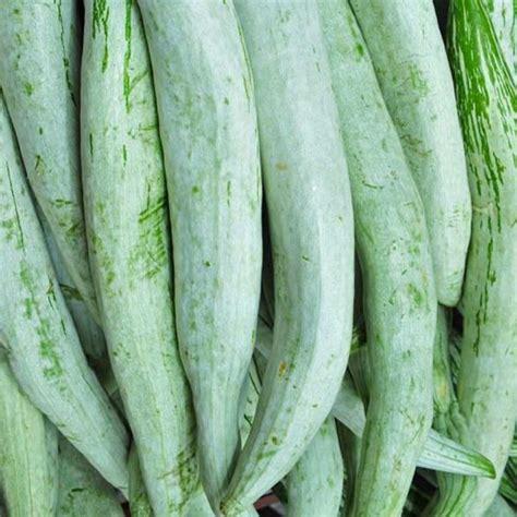 buy  snake gourd chachinda desi desi seeds   nursery   seeds  lowest price