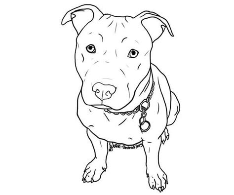 imagenes para dibujar que enamoran 35 im 225 genes de perros para colorear e imprimir cancitos