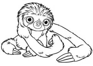 sloth coloring page baby sloth coloring page color