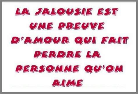jalousie meaning jalousie definition what is
