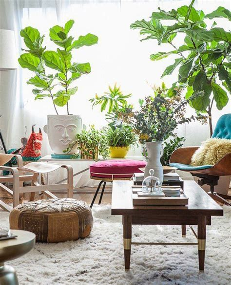 indoor living room plants living room your impression make it