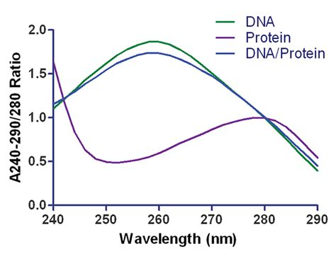 protein 280 nm low volume high throughput workflow for analysis of