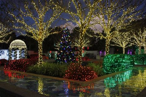 elegant florida botanical gardens largo fl holiday lights