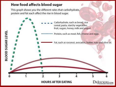 healthy fats blood sugar the top 12 foods to balance blood sugar levels drjockers