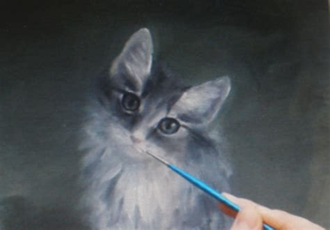 paint a cat cat speed painting by olena ivanytska