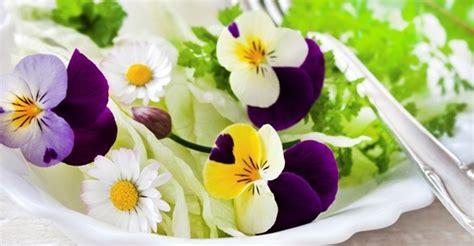 fiori edibili fiori edibili gpsreviewspot