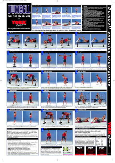 weight bench exercises chart 7 best images of dumbbell exercises chart printable pdf