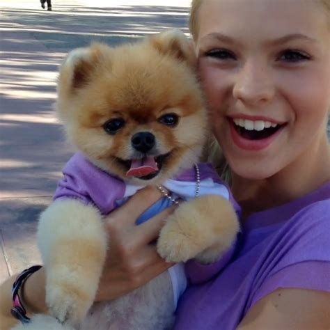 what of is jiffpom jiffpom