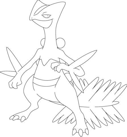 pokemon coloring pages grovyle sceptile pokemon coloring page free printable coloring pages