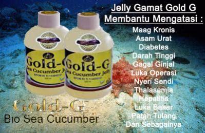 Obat Tradisional Maag Kronis Alami Herbal Gold G obat maag kronis alami obat asam lambung