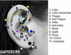 aia piercing piercings pour les oreilles aia piercing