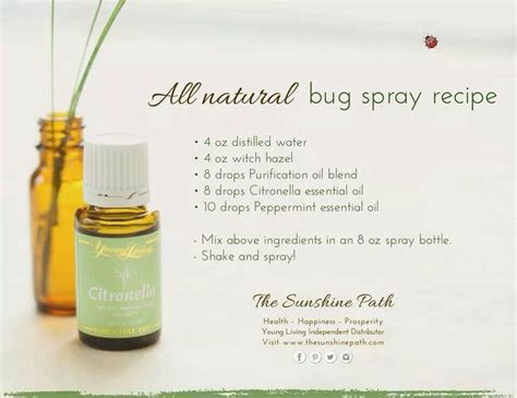 Peppermint Bed Bugs by 17 Best Images About Naturals On Bug Spray