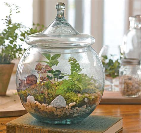 terrarium ideas book slideshow  gardeners supply