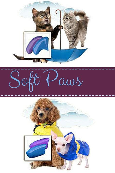 declawing dogs 1000 images about soft paws on cats cats and cat products