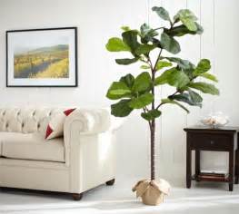Pottery Barn Rugs Sale Faux Potted Fiddle Leaf Tree Pottery Barn