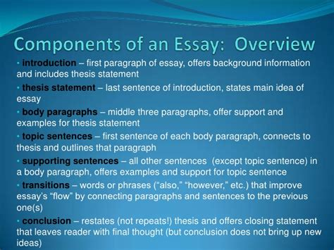 An Essay About My by Components Of An Essay Overview
