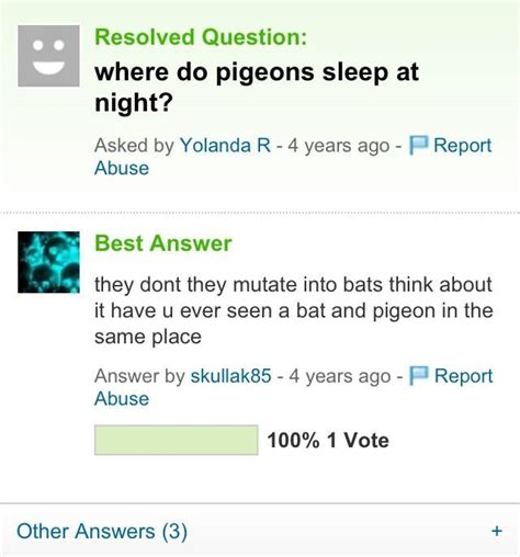 best yahoo answers questions 14 best yahoo answers images on