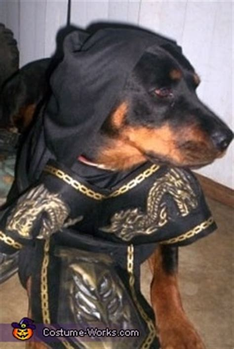 dog  ninja costume unique diy costumes