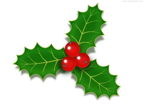 Branch Decorations For Home by Christmas Holly Berries Icon Psd Psdgraphics