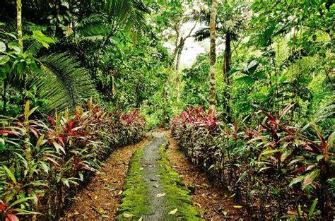 el paraiso en la hosteria el paraiso de las orquideas bewertungen fotos preisvergleich archidona ecuador