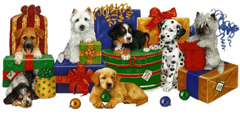 christmas animals animated images gifs pictures animations
