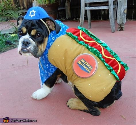 kosher dogs kosher costume