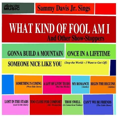 what type of am i what of fool am i sheet by sammy davis jr easy piano 34232