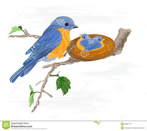 Gradient Nest birdie and birds in the nest stock vector image 39087171