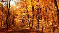 Autumn Desktop Wallpapers HD And Wide