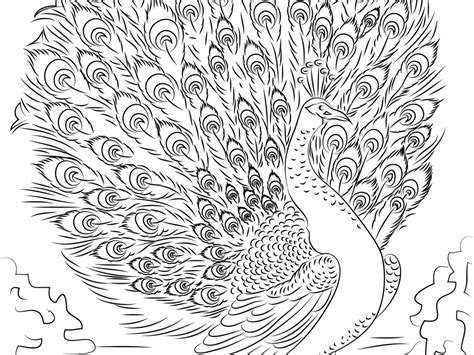 free printable advanced coloring pages 52 free printable advanced coloring pages advanced skill