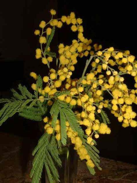 fiore della donna festa della donna dilloconunfiore