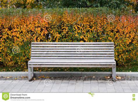 bench scene white bench in the park autumn scene still life colorful leaves background tilt