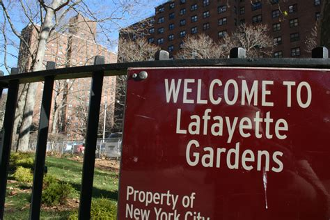 Lafayette Gardens by Lafayette Gardens Residents Steamed About Heating Issues