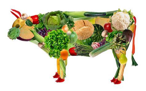 alimentos solo proteinas puras los mejores alimentos ricos en prote 237 nas vegetales