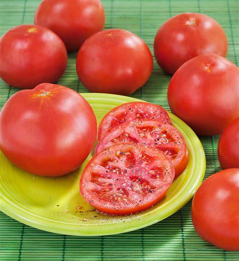 Urban Organic Gardening - marglobe heirloom tomato bonnie plants