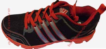 Sepatu Adidas Terrex Runn 13