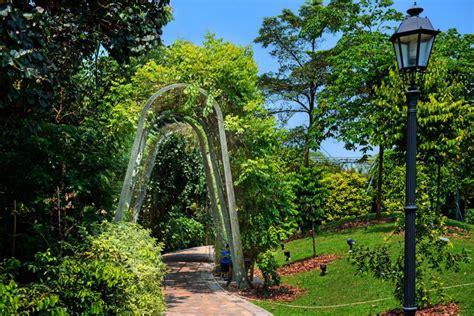 singapore botanic gardens trellis garden lepl